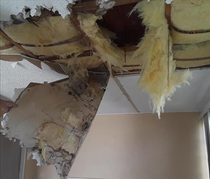 Mold Remediation and repairs in Tamarac, FL Before