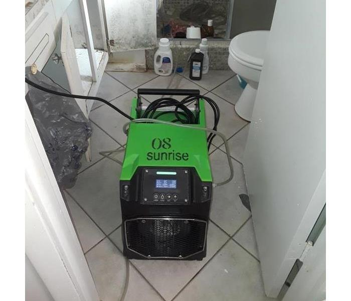 Mold Remediation in Sunrise, FL After