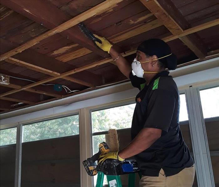 Mold Remediation and repairs in Tamarac, FL After