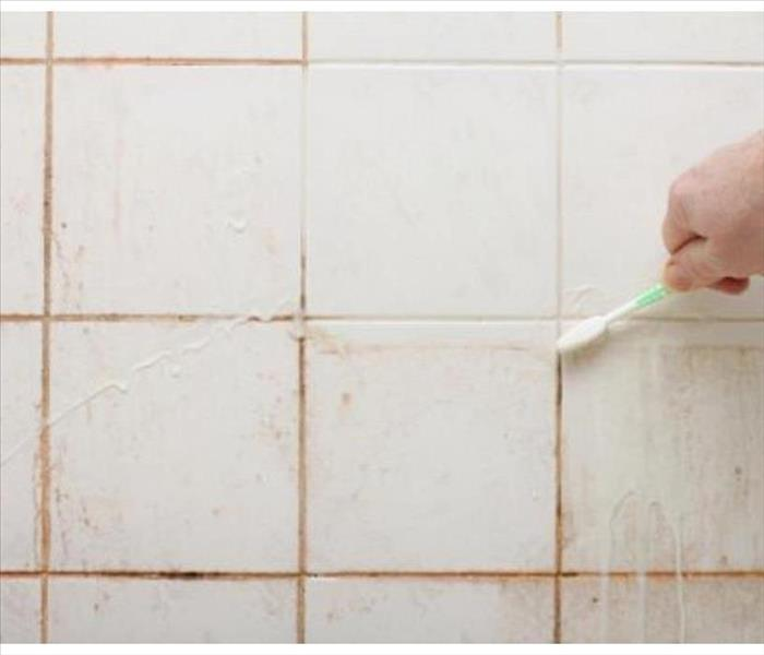 Solved! How to Get Rid of Pink Mold in the Shower for Good | SERVPRO on black mold ceiling in bathroom, cleaning mold in bathroom, removing mold from bathroom, mold removal from bathroom,