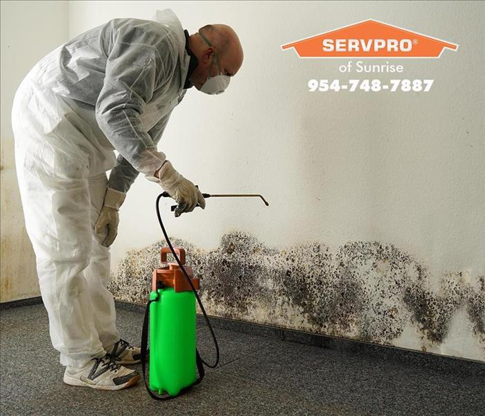 Mold Remediation SERVPRO of Sunrise presents: Mold in Rental Property